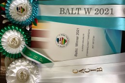 Prada Baltic Winner 2021